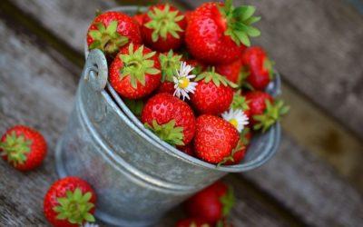 Alimentation – booster vos défenses immunitaires